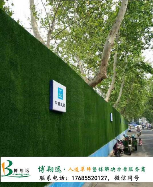 围墙防真绿草皮(案例:邢台、琼山)