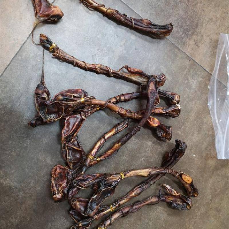纳米比亚海狗鞭 海狗肾产地哪里购买多少钱一条