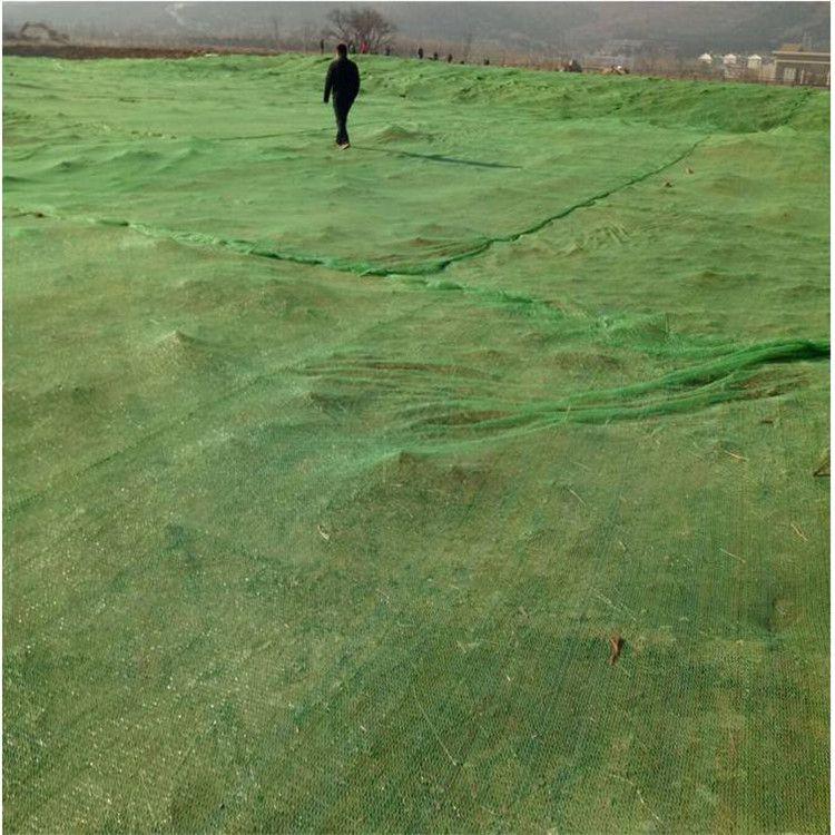 1.5-6针绿色防尘网 盖土网 遮阳网大量现货供应
