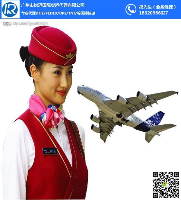 广州国际快递实力庄家 DHL一级代理