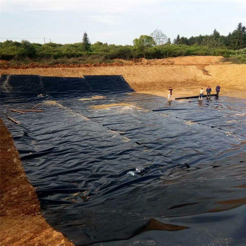 HDPE土工膜多少钱一平米