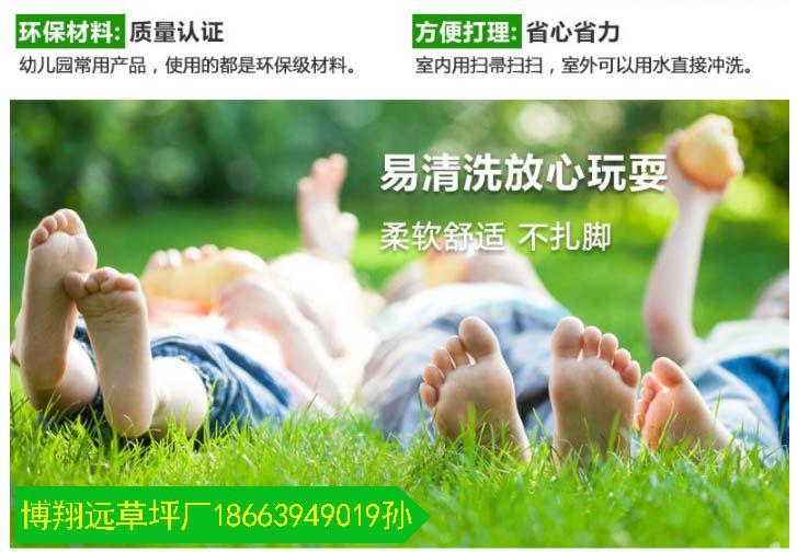 绿化装饰草坪批发