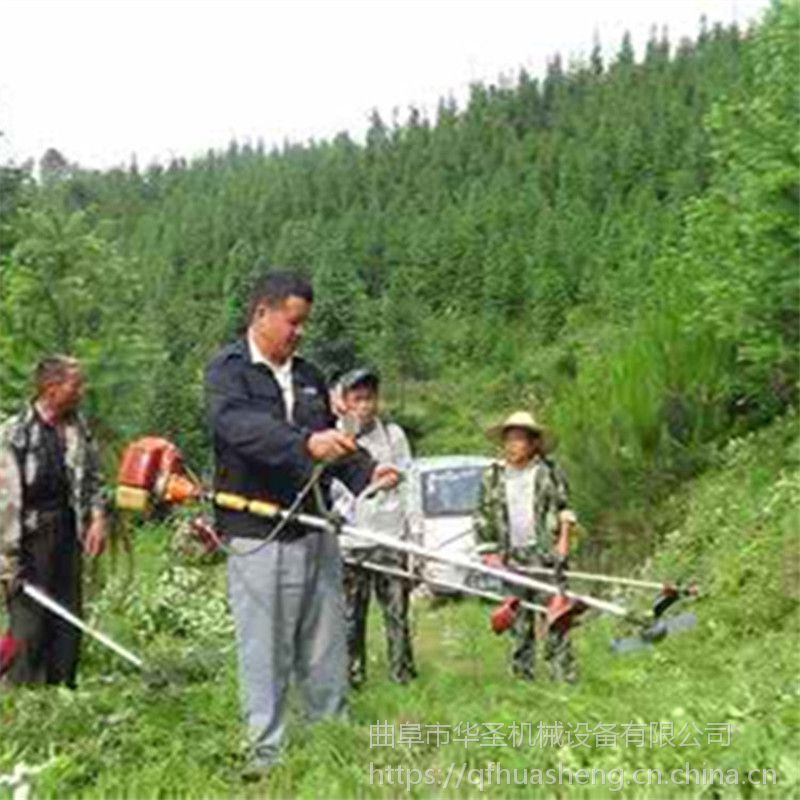 大面积杂草背负式割草机 软管式汽油割灌机厂家批发
