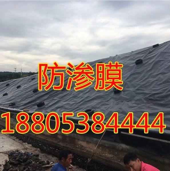 http://himg.china.cn/0/5_683_1005687_595_600.jpg