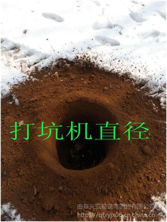 江苏汽油型种树机 秋季给果树施肥适用范围广