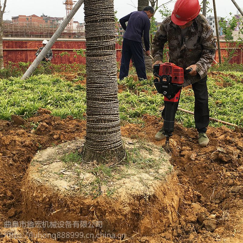 供应小型轻便铲式挖树机 大功率汽油移苗机