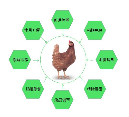 """如何高效防护流感—宝来利来""""泰""""火热招商"""