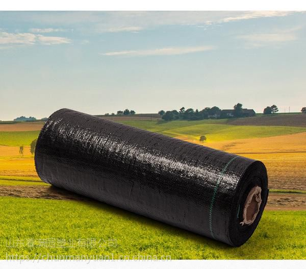 地布防草地布临沂防草地布厂家春满园防草地布
