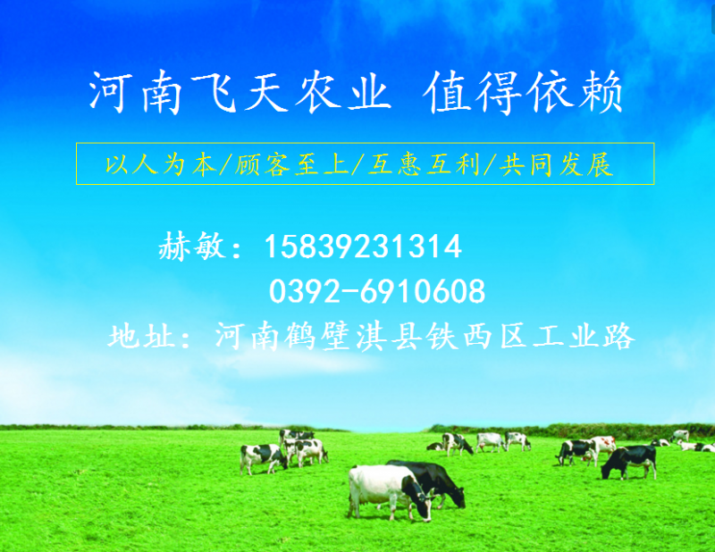 厂家供应喷浆玉米皮玉米纤维玉米麸皮饲料出口内销50公斤