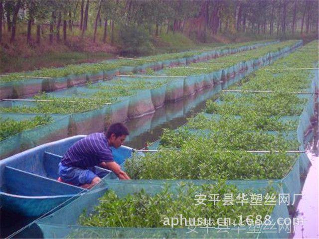 【厂家直销】养殖网箱、水产养殖网箱、养殖泥鳅网、黄鳝网箱