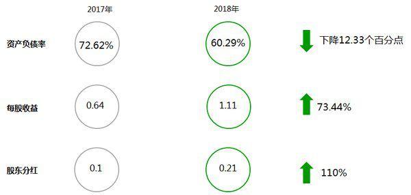 2018年度新奥股份亮点数据(单位:元)