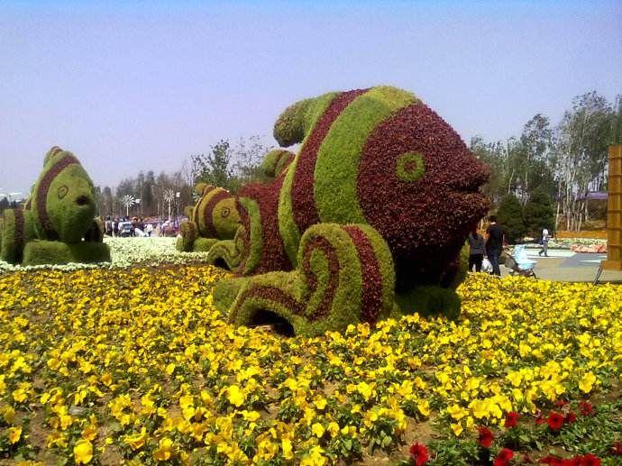 http://himg.china.cn/0/5_758_1033537_690_517.jpg