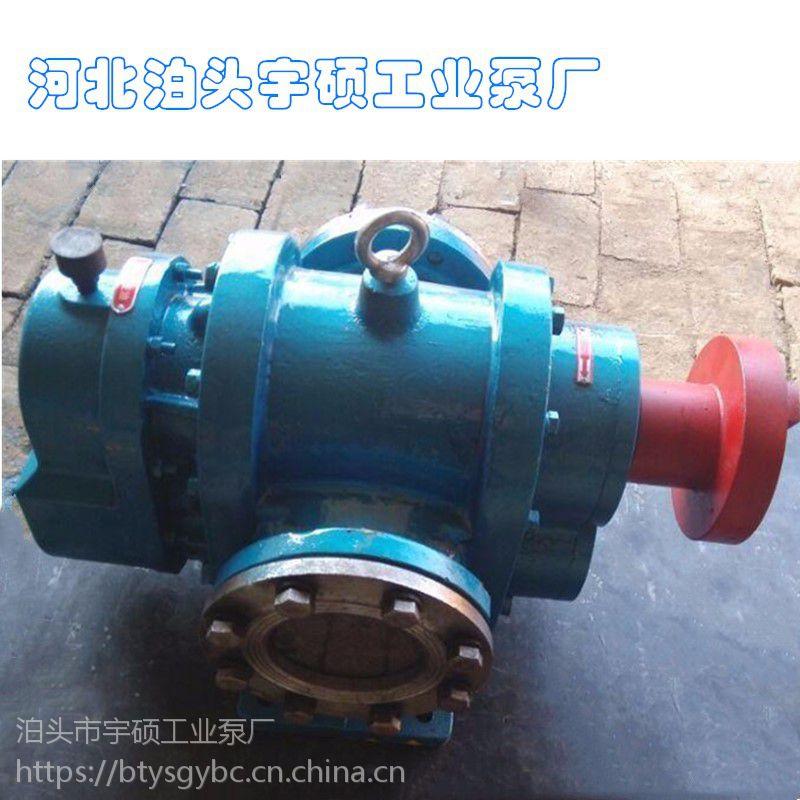 泊头宇硕供应LC罗茨油泵 铸铁凸轮双转子泵 糖稀专用转子泵 胶类专用罗茨泵