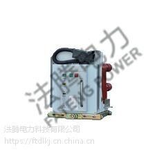 法腾电力厂家直销VGV-12 户内中压固封式真空断路器