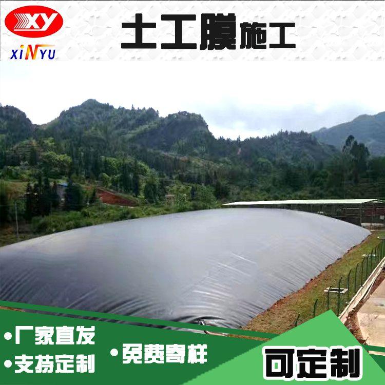 防渗黑色土工膜 沼气池黑膜 建造速度快 成本低 产气量大 厂家直发 山东货源直销