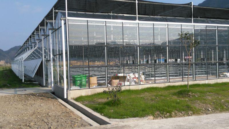 贵州玻璃观光温室/玻璃温室大棚/玻璃水培温室