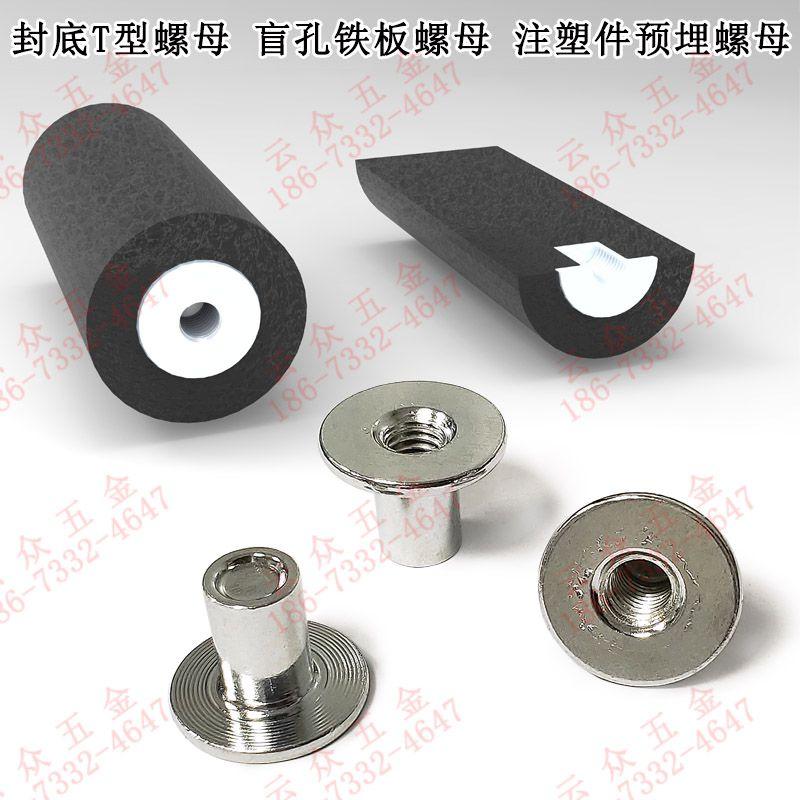 不通孔T型螺母柱注塑件预埋螺母