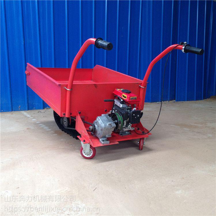 结冰窄路载货推车 加宽轮胎燃油车 履带车 奔力LD-QYTC