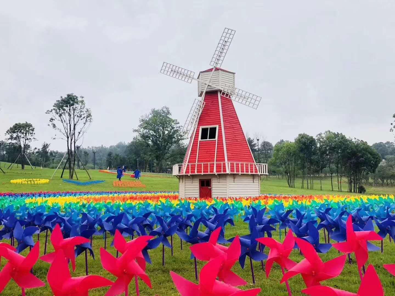 上海驰威展览有限公司