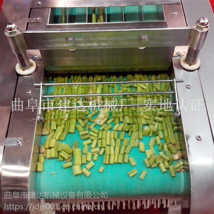 家用电动切菜机 不锈钢切菜机厂家