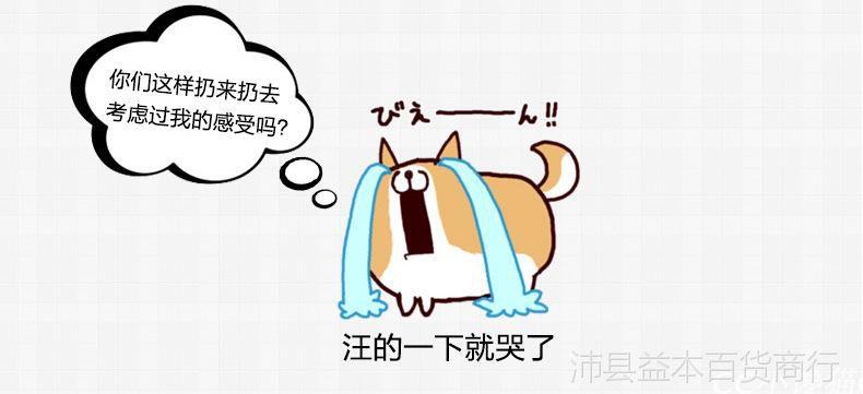 毛绒生日滑稽表情doge扔狗柴犬抱枕表情玩iphone怎么添加自定义礼物包图片