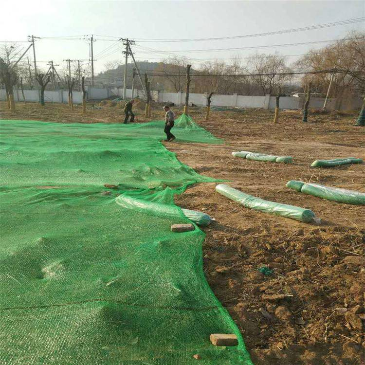 塑料制品生产 厂家盖土网 绿化网防尘布