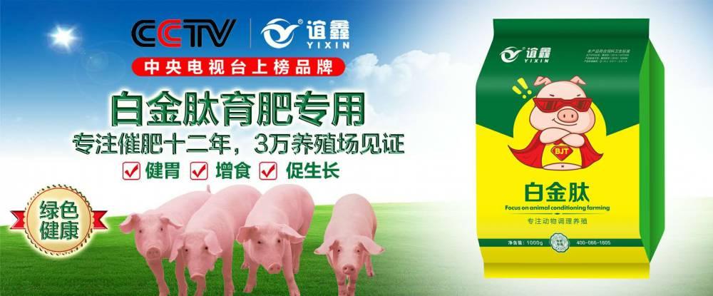 育肥猪吃什么长得快  生猪催肥剂   育肥猪饲养方法