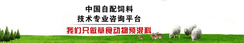 http://himg.china.cn/0/5_898_1057411_800_142.jpg