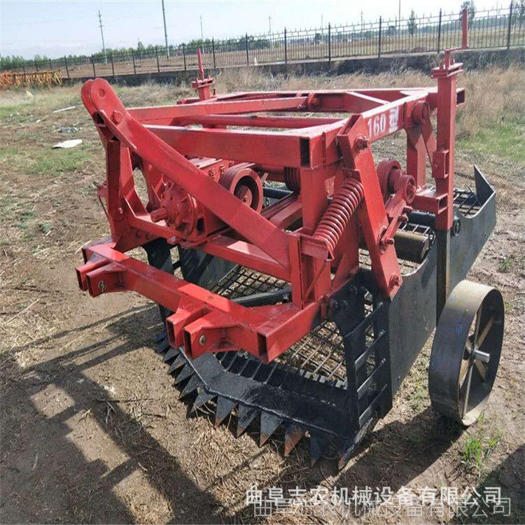 麦冬药材挖掘机 薤白滚筒式挖药机价格 当归药材收获机厂家