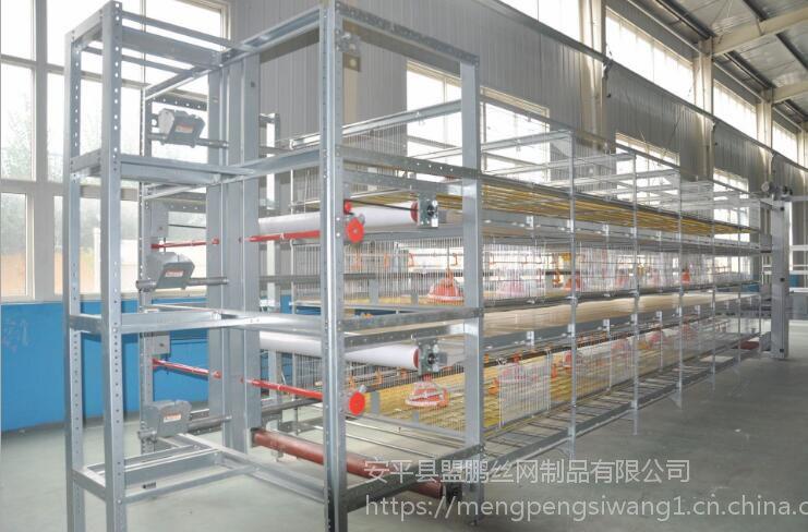 厂家生产出口肉鸡笼 三层立式雏鸡笼 蛋鸡笼配件