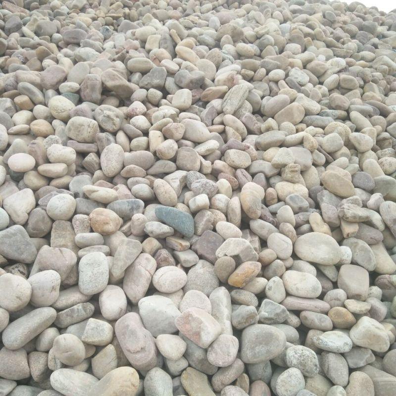 水过滤鹅卵石滤料 园林铺路天然鹅卵石