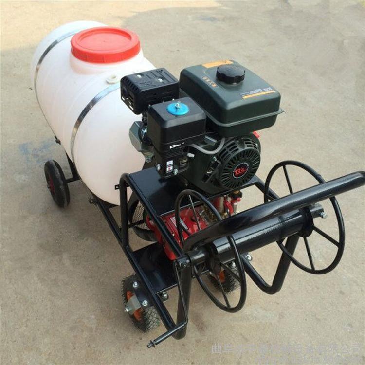 果树大棚打药机 小型手推高压喷雾器宏程打药机