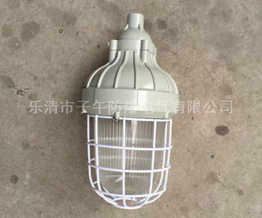 CCD93-J105h1防爆平台灯 防爆灯