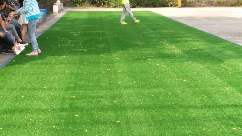 足球场草坪施工中,五人制足球场选用单丝型50MM长草坪