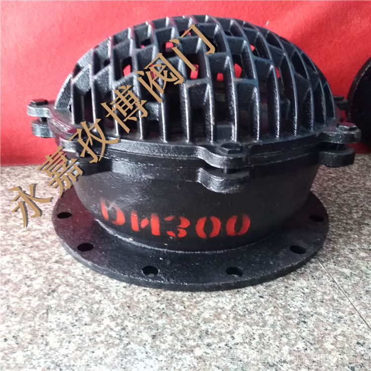 铸铁底阀 H42X-6 DN40 软密封水泵底阀 H42H-6C 永嘉孜博阀门