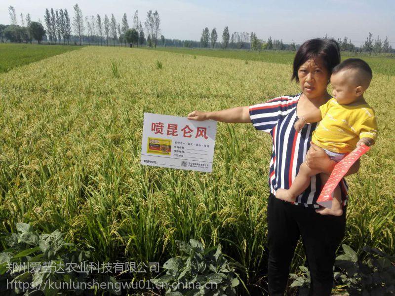 昆仑风水稻增产叶面肥 返青柯杈肥 水稻高产套餐