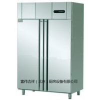 冰立方大二门冰箱FX2 二门单温冷冻冰箱 冰立方两门高身雪柜