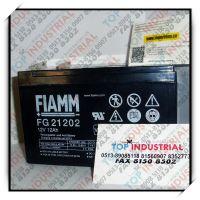 FG21201,FIAMM电池,意大利原装进口
