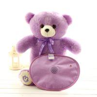 厂家直销热水袋电热宝暖手宝防爆充电暖水袋薰衣草小熊一件代发