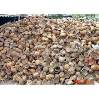 南平市优质椰壳活性炭厦门越润客户至上
