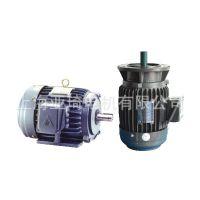 供应AEEF FAC无锡东元卧式电动机|TECO马达|teco电动机