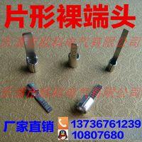 厂家直销冷压接线端头 DBN5.5-10 温州片形裸端头规格 冷压端子