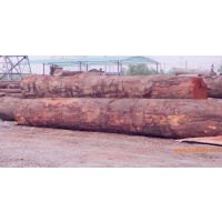 供应定尺加工山樟木价格板材