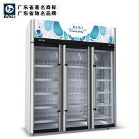 供应百利 立式三门冷柜 超市展示柜冰柜 豪华型雪柜 进口压缩机