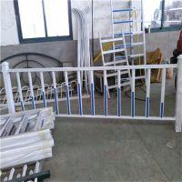 供应城市交通护栏防撞网 镀锌管焊接喷塑护栏