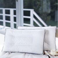爆款荞麦保健枕 定型护颈枕 超柔高弹决明子保健枕 枕头一件代发