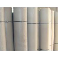 塑料养殖网厂家销售 塑料平网报价 金龙塑料网
