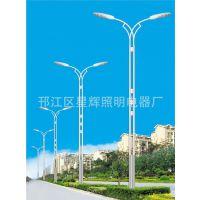 【厂价直销】道路照明灯 道路灯 品质保证 欢迎致电