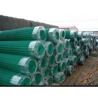 南通荷兰网浸塑钢丝网厂家批发 现货供应 量大可商谈