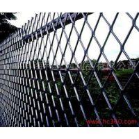 菏泽浸塑电焊网厂,菏泽钢板网报价,菏泽镀锌荷兰网